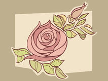 Rose on light background Royalty Free Stock Photos
