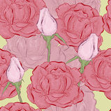 Rose in line. Red and pink roses in line stock illustration