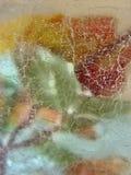 rose lodu. zdjęcie stock