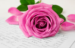 Rose and love letter close-up Royalty Free Stock Photo