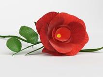 Rose Love Means Petal Romantic y pétalos Imagen de archivo