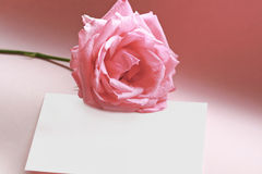 Rose on a love note. Pink rose laid over a blank white note card on romantic pink background. Fit for love, valentines, occasion, engagement, romantic moments Stock Photo