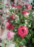 Rose of love. Rose for valentine , wedding flower Stock Photo