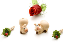 Rose with luck pig and ladybug Royalty Free Stock Photo