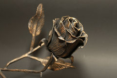 Rose métallique Photo libre de droits