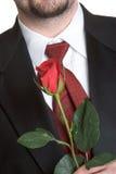 Rose Man Stock Photo