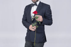 Rose man. Man in a suit holding a red rose Stock Images