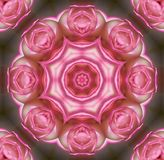 Rose mandala. Rose flower mandala Royalty Free Stock Photos