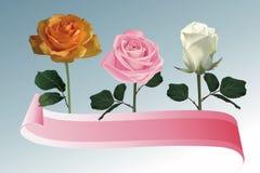 Rose med banerillustrationen Royaltyfri Bild