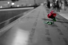 Rose at memorial Stock Photos