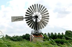 Rose mill de Hercules in the Netherlands Stock Image