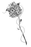 Rose mit den Dornen Stockfoto