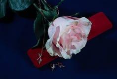 Rose mit Goldzusatz auf blauem Hintergrund stockfoto
