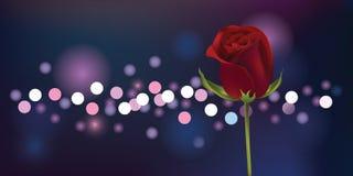 Rose mit Unschärfehintergrund Illustration lizenzfreie stockfotos