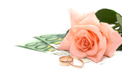 Rose, money and rings Stock Image
