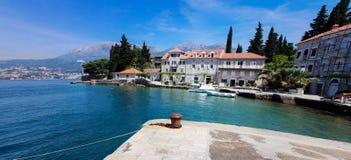 Rose, Montenegro Stock Image