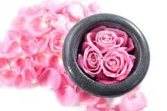 Rose in mortaio Fotografia Stock