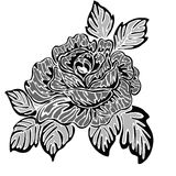 Rose motif pattern. Pattern of rose sketch design Stock Illustration