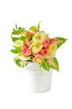 Rose multicolori Immagini Stock Libere da Diritti