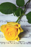 Rose and music. A yellow rose on sheet music Royalty Free Stock Image