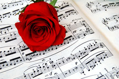 Rose and music book. Red rose lying on piano music Stock Images