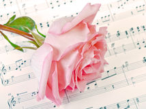 Rose and music Royalty Free Stock Photos