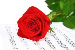 Rose and music sheets, isolated on white Royalty Free Stock Images