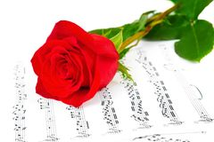 Rose and music sheets Stock Image