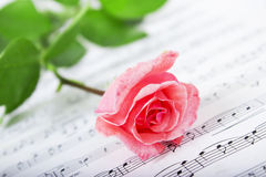 Rose and Music. Single rose over sheet music Royalty Free Stock Photography