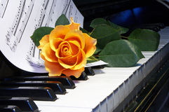 Rose on  musical note Royalty Free Stock Image