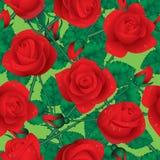 Rose nahtlos Lizenzfreies Stockfoto
