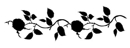 Rose nature illustration design set green watercolors white background vector illustration
