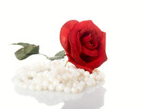 Rose with necklaces Royalty Free Stock Image