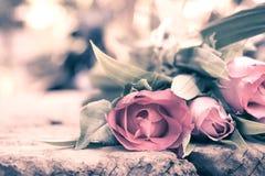Rose nello stile d'annata Immagini Stock