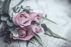 Rose nello stile d'annata Fotografie Stock Libere da Diritti