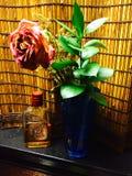 rose nie żyje Zdjęcia Stock