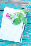 Rose and note Royalty Free Stock Image