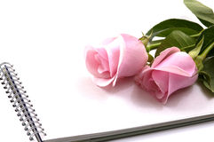 Rose and notebook Stock Images