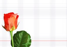 Rose on a notebook sheet Stock Images