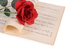 The rose on notebooks with notes Stock Photography