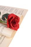 The rose on notebooks with notes Royalty Free Stock Photos