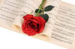 The rose on notebooks with notes Stock Images