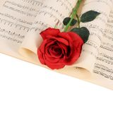 The rose on notebooks with notes Royalty Free Stock Photo