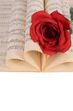 The rose on notebooks with notes Royalty Free Stock Images