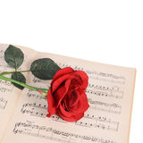 The rose on notebooks with notes Stock Photos