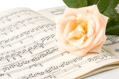 The rose on notes Royalty Free Stock Image