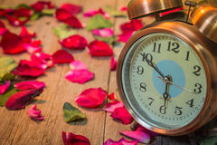 Rose observe l'amour Image libre de droits