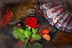 Rose och en ventilator Royaltyfri Bild
