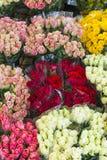Rose offerte al mercato del fiore di notte immagine stock libera da diritti
