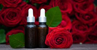 Rose oil, Bottles and fresh flower and leaves. On a natural background, bio, organic , nature cosmetics concept stock image